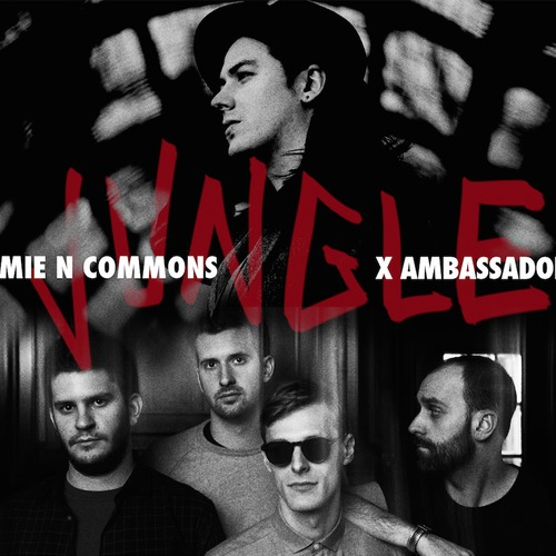 Скачать песню jungle x ambassadors jamie n commons